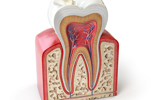 root-canals-whitby-dental-office